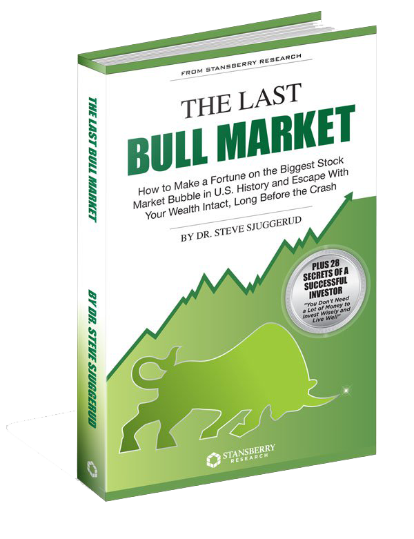 Dr steve sjuggerud the last bull market